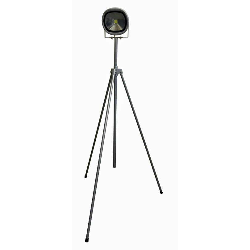 Elite Extending Swing Leg Tripod Single LED 30w Site Light